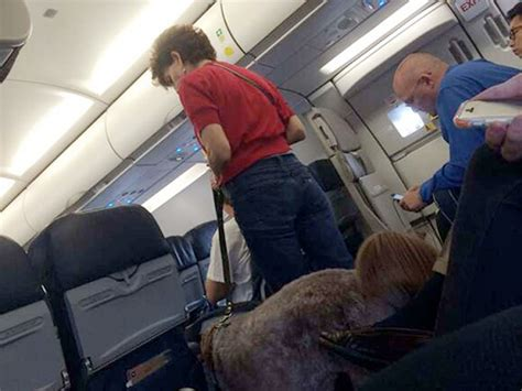service dogs on planes service forces emergency landing topic