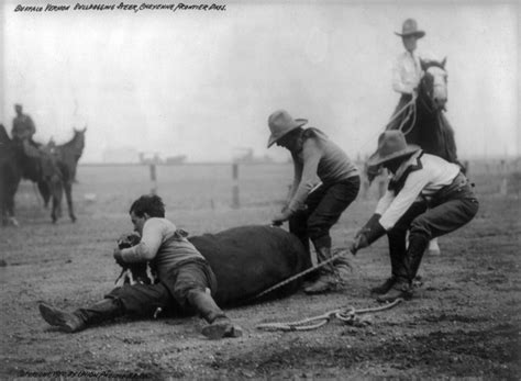 boat salvage yard pueblo co bulldogging at cheyenne frontier days 1910 in wyoming