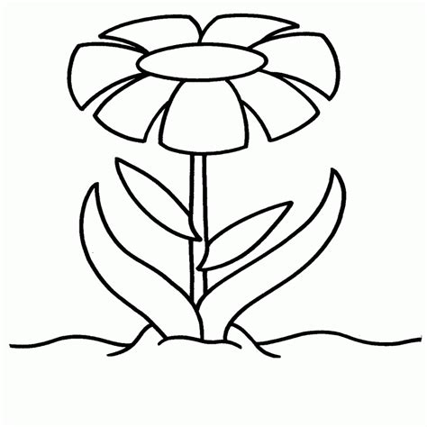 imagenes de flores grandes para pintar en tela plantillas para pintar flores dibujos para colorear