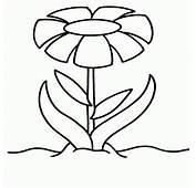 Dibujos De Flores Grandes Para Pintar