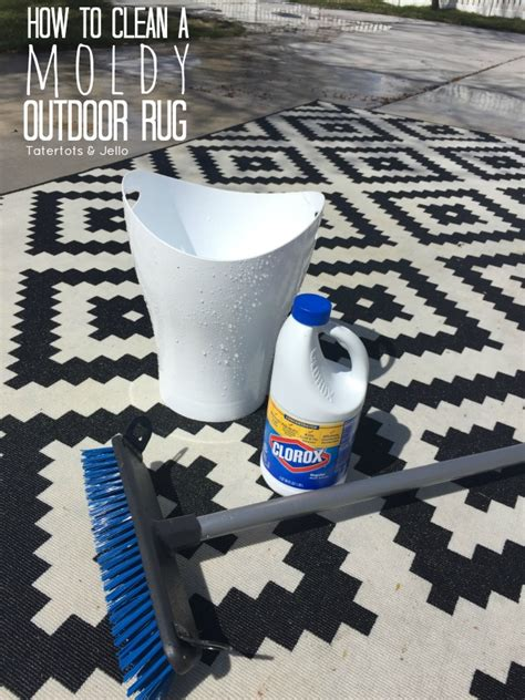 How To Clean An Outdoor Rug Roselawnlutheran How To Clean Outdoor Rugs