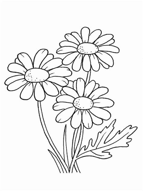 Gambar Mewarnai Bunga Untuk Anak TK, SD Dan PAUD