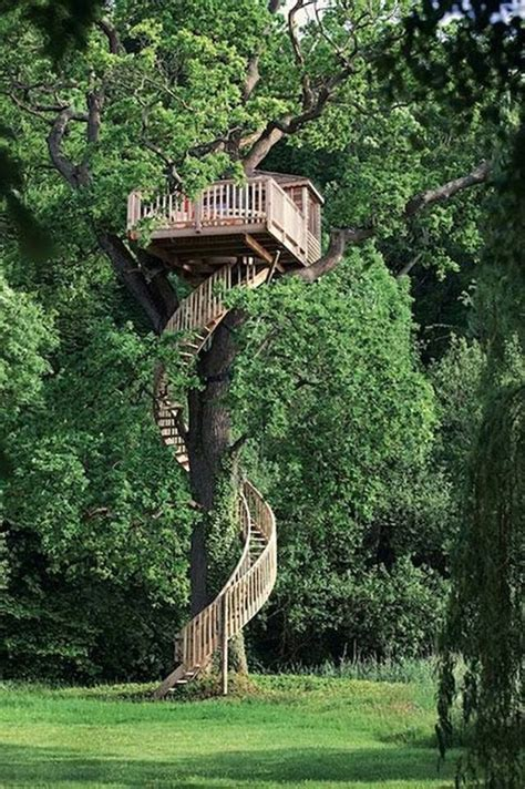 tree houses 25 best ideas about tree houses on pinterest treehouse