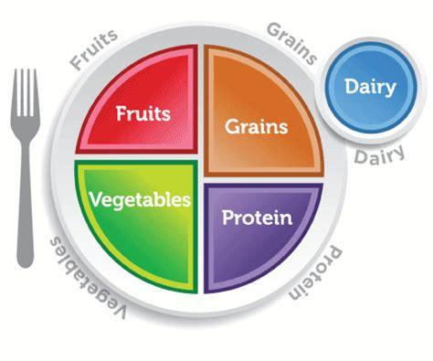 carbohydrates science carbohydrates science lesson activity 1 of 3 tv411