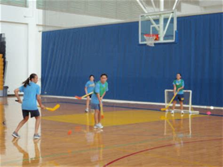 floor hockey unit plan by mrs a teachers pay teachers coolen s 7 8 girls pe 7th grade indoor floor hockey