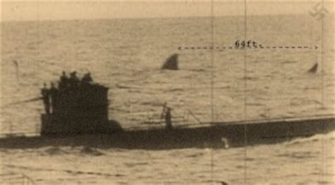 Near German U Boats South Africa 1942 Photo Is Atop This Post | german navy fake photo of sharks with u boat