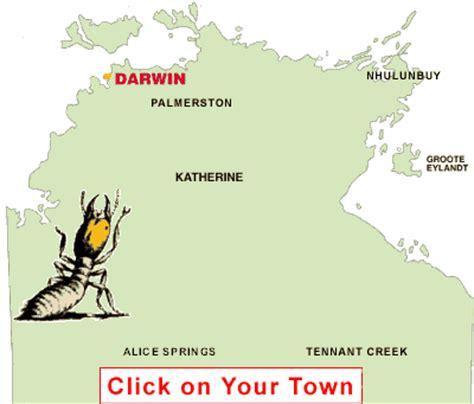 termites white ants termite control pest control