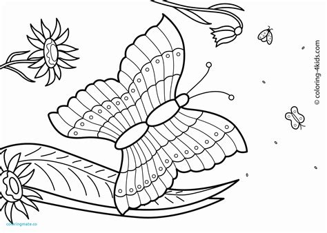 summer coloring page pdf fresh summer coloring pages pdf free unique new 27