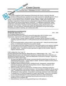 human resources vice president sle resume sle