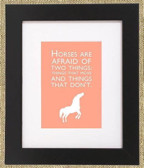 printable horse quotes horse quotes framed print horses are afraid of two door