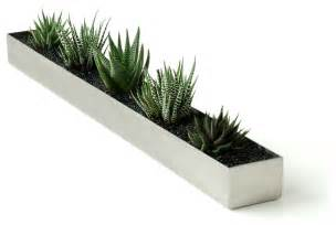 Indoor Planters Gus Modern Fruit Trough Modern Indoor Pots And Planters