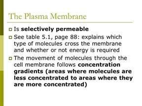 Chapter 7 Section 2 The Plasma Membrane by Chapter 5 Continued Section 5 3 Plasma Membrane