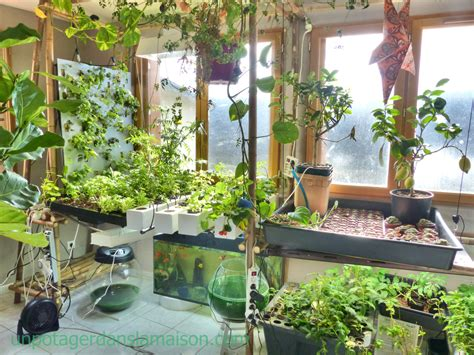 Vertical Container Gardening - indoor vegetable garden let s invent a universe together