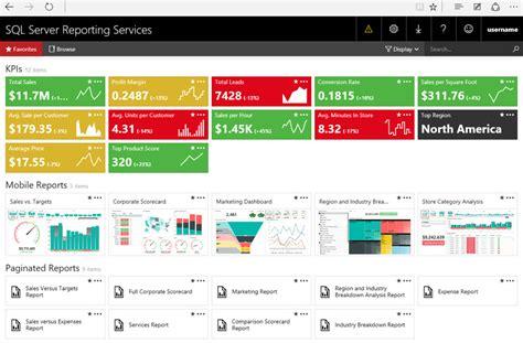 Microsoft Bi Suite Dynamic Info Server Report Template