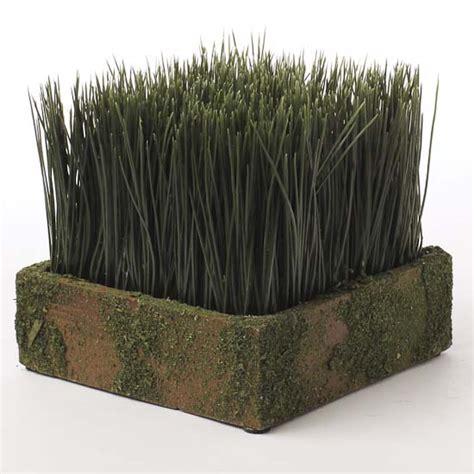 artificial wheat grass in moss planter artificial