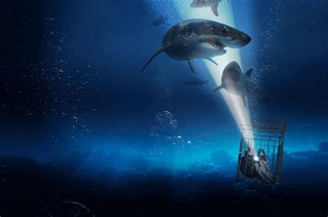 47 meters to feet film review sharks suffocation and safety issues at 47