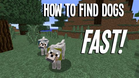 how to find a puppy minecraft how to find dogs wolves fast in 1 8