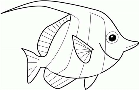 big eyed angel fish coloring page coloring sky