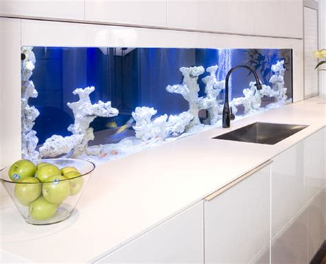 modern aquarium kitchen with a strong visual impact by modern aquarium kitchen with a strong visual impact by