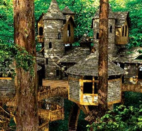 treehouse castle the devoted classicist recent redecoration at alnwick castle
