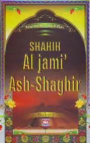 Shahih Al Jami Ash Shaghir Jilid 1 kitab shahih jami us shaghir kamilin