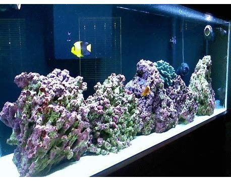 Aksesoris Aquarium jual aksesoris aquarium di jakarta jual aquarium jakarta