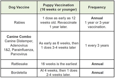 12 week puppy schedule pet deworming and vaccine schedule for dogs pet care pets world