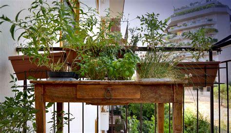 orto terrazzo come fare un orto sul terrazzo coltivare orto in terrazza