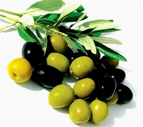 Minyak Zaitun Konsumsi 30 makanan yang mengandung vitamin e dan manfaatnya