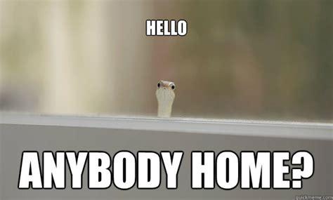 hello home hello anyone home images