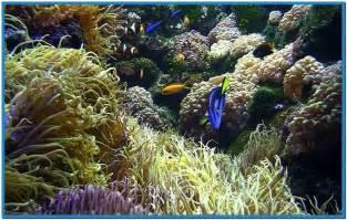 Free Live Aquarium Screensavers Download