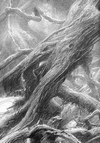 alan_lee_the lord of the rings_sketchbook_09_fangorn06_med