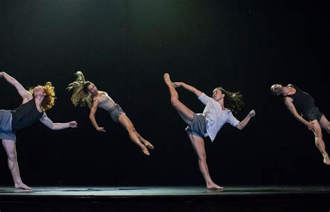what is contemporary dance sydney dance company
