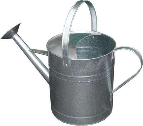 Decorative Watering Cans by Galvanised Metal Rose Watering Can 9 Litre 2 Gallon