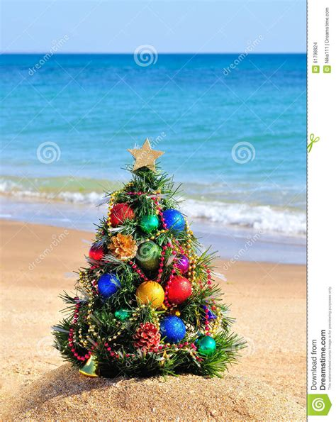 christmas tree on sand in beach stock photo image 61798824