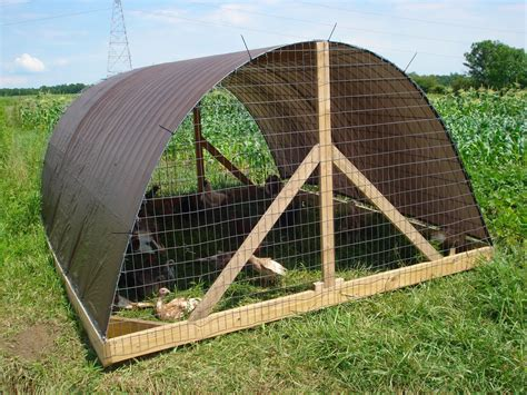 hoop houses pin hoophouse chicken coops for pastured poultry on pinterest