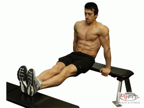 dips bench tricep kickbacks exercise myfit