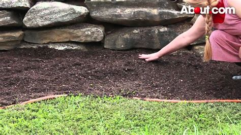 how to create a flower bed how to start a flower garden qtiny com