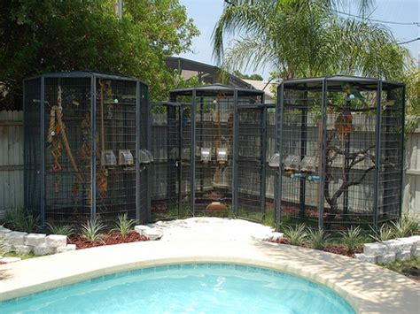 outdoor cage outdoor bird cage designs
