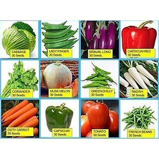 Seeds Combo Of 15 Hybrid Vegetable For Terrace Kitchen Best Seeds For Vegetable Garden
