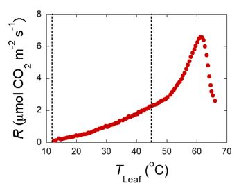 temperature response curve of rates of leaf respiratory co2 release r temperature response of respiration models and experiments heskel lab macalester