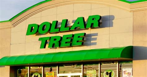 dollar tree images 5 stupid things say at dollar tree