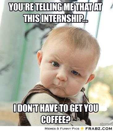 Intern Meme - 5 reasons why studying at a hogeschool is awesome