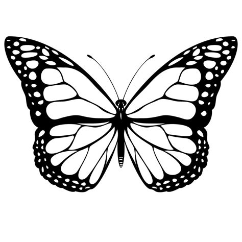 black and white coloring pages of butterflies butterfly images in black and white clipart best