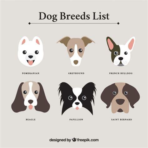 photos of naughty dogs around the world wallpapers pet o club hondenrassen lijst vector gratis download