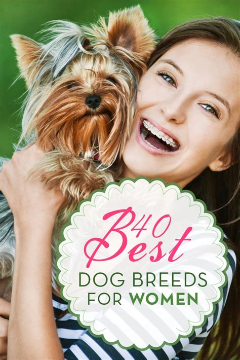 best breeds for 40 best breeds for top tips