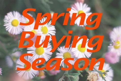 House Buying Season 28 Images Why Buying A Home During The Season Might Be A