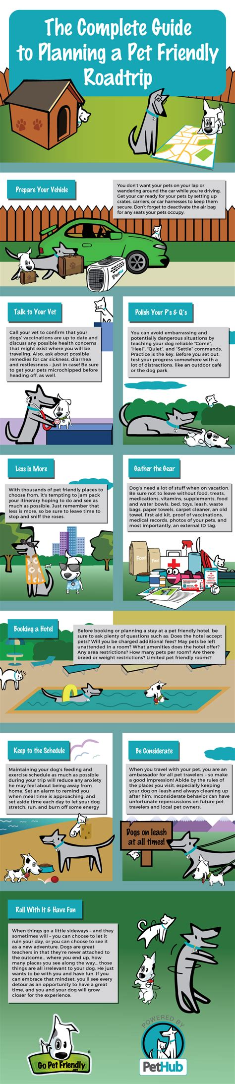 multi engine guide the comprehensive guide to prepare you for the faa checkride guide series books complete guide to pet friendly road trips infographic