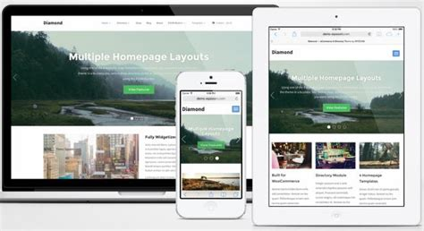 responsive layout maker pro key diamond review wpzoom directory theme reality