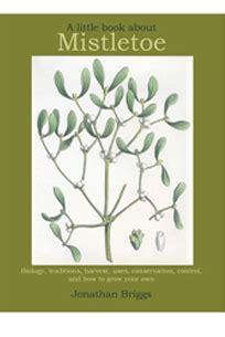mistletoe the brothers volume 2 books october 2013 jonathan s mistletoe diary